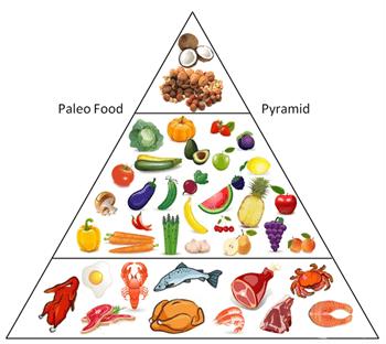 paleo dieet kritiek